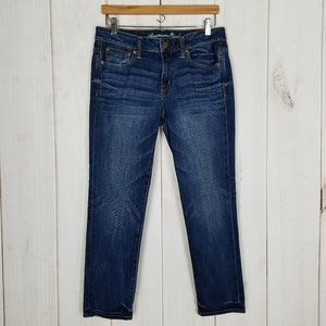 American Eagle Outfitters Straight Jeans Mid Waist
